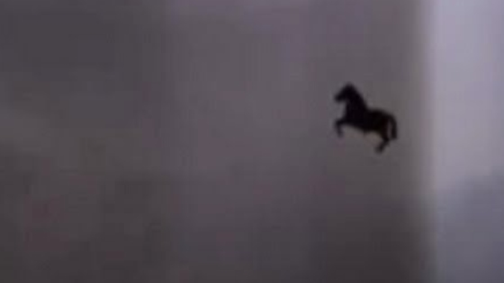 Black flying horse.